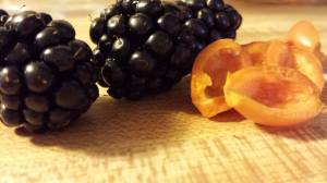 blackberries and fresh rose hips