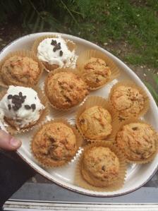 pulp muffins
