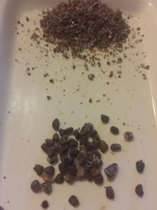 cardamom seeds and ground cardamom