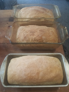 fresh made bread