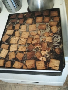 crumbled mess of attempting crackers