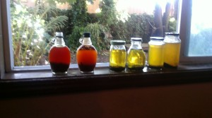 row of infusions in the window